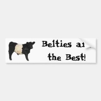 Gorgeous Belted Galloway Steer Cutout Bumper Sticker
