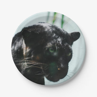 Gorgeous Black Panther Paper Plate