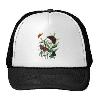 Gorgeous Butterflies Cap