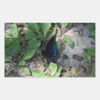 Gorgeous Butterfly Photograph Rectangular Sticker