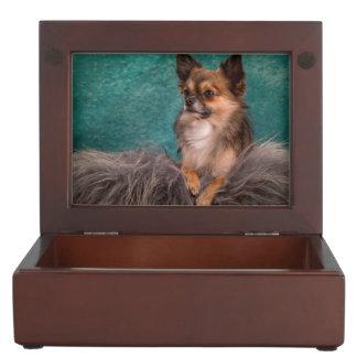 Gorgeous chihuahua portrait keepsake box