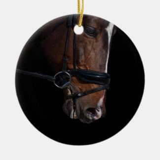 Gorgeous close up horse head ceramic ornament