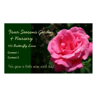 Gorgeous Deep Pink Rose Pack Of Standard Business Cards