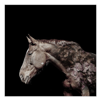 Gorgeous Double Exposure Horse Flower Photo Poster