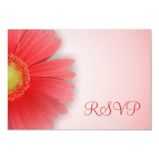 Gorgeous Gerbera RSVP Card