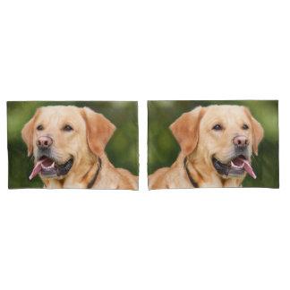 Gorgeous Golden Labrador Pillowcase