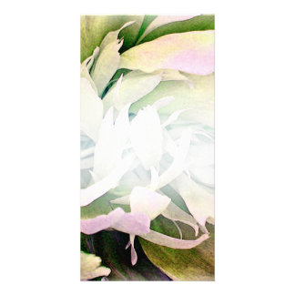 Gorgeous Green Blossom and White swirls Photo Cards