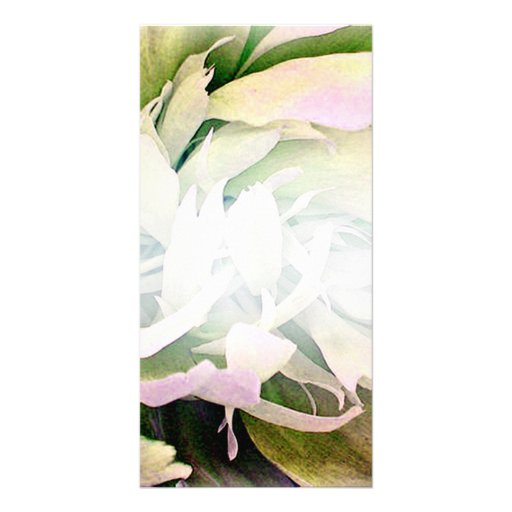 Gorgeous Green Blossom and White swirls Photo Greeting Card