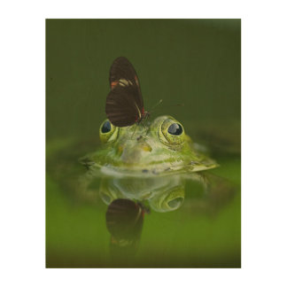 Gorgeous green water frog and butterfly in pond wood print