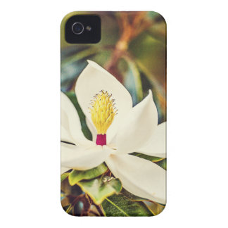 Gorgeous Mississippi Magnolia iPhone 4 Case-Mate Case