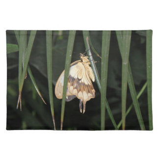 Gorgeous Moth Placemat