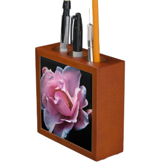 Gorgeous Pink Rose on Black. Desk Organiser