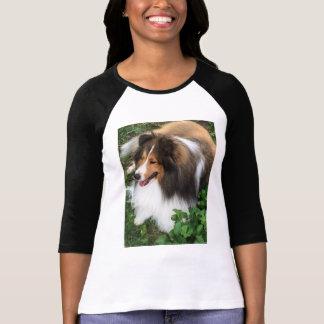 Gorgeous Sheltie Lover Baseball Shirt! T-Shirt