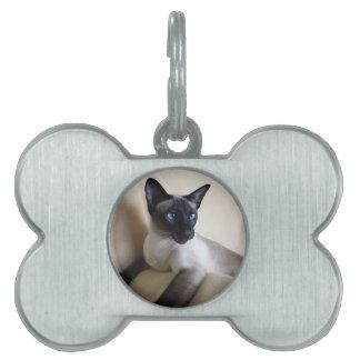 Gorgeous Siamese Cat Face Pet Name Tag
