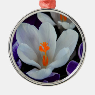 Gorgeous Spring Tulips Silver-Colored Round Decoration