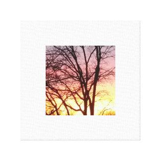 Gorgeous sunset photograph. canvas print