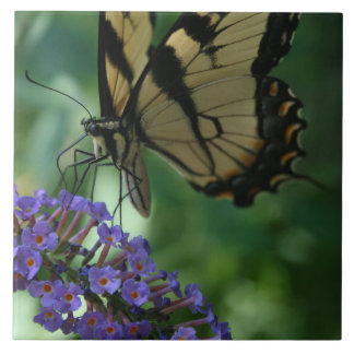 Gorgeous Tiger Swallowtail Butterfly. Tile