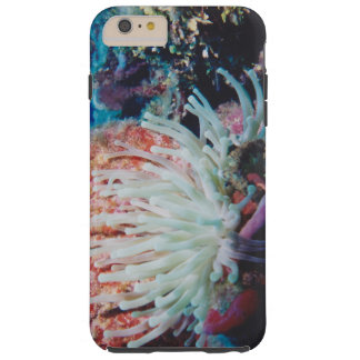 gorgeous undersea tropical coral reef tough iPhone 6 plus case