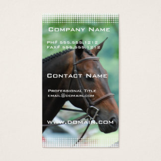 Gorgeous Warmblood Horse Business Card