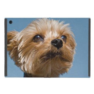 Gorgeous Yorkshire Terrier iPad Mini Case