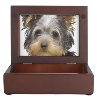 Gorgeous Yorkshire Terrier Keepsake Box