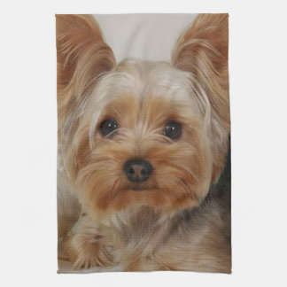 Gorgeous Yorkshire Terrier Tea Towel