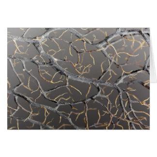 Gorgonian coral card