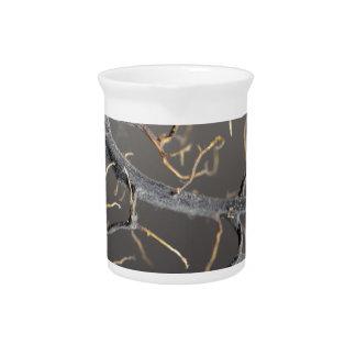Gorgonian coral pitcher