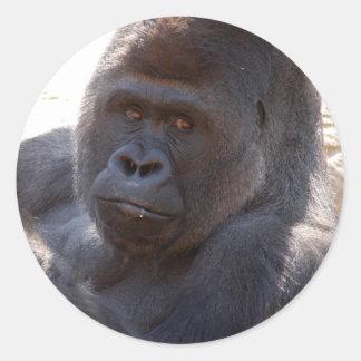 Gorilla_004 Classic Round Sticker