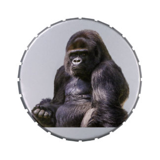 Gorilla Ape Monkey Jelly Belly Candy Tins