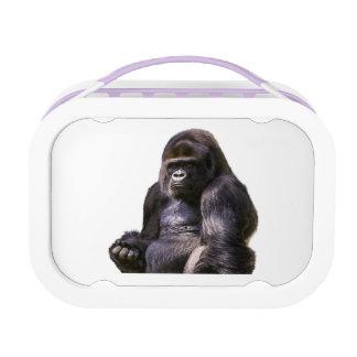 Gorilla Ape Monkey Lunchbox