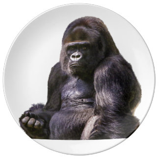 Gorilla Ape Monkey Porcelain Plates