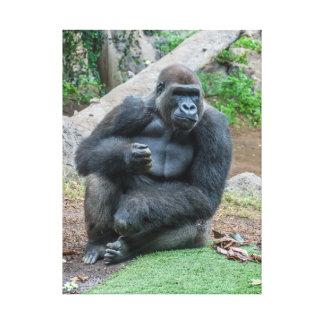 Gorilla at the zoo canvas print