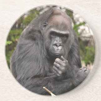 Gorilla F 8672 Coaster