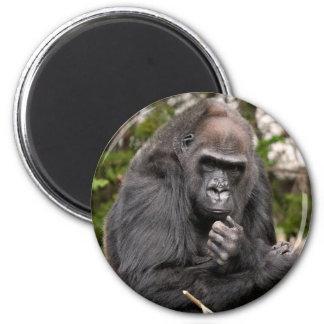 Gorilla F 8672 Magnet