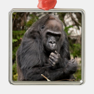 Gorilla F 8672 Metal Ornament