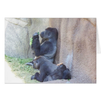 Gorilla Family Card
