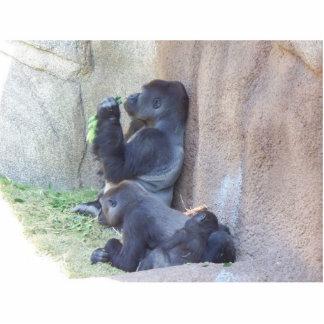 Gorilla Family Photo Cutouts
