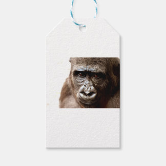 gorilla gift tags
