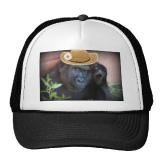 Gorilla in a straw hat, cap