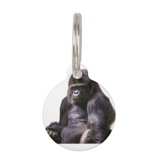 Gorilla Monkey Ape Pet Tag