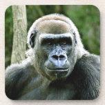 Gorilla Profile Cork Coasters