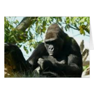 Gorilla Thinking Card