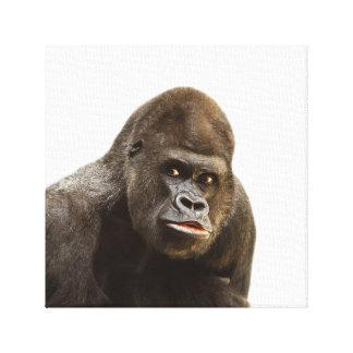 Gorilla wild jungle zoo animal photo canvas print