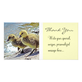 Gosling Siblings (Thank You) Personalized Photo Card