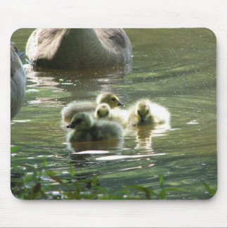 Goslings Mousepad