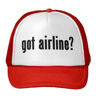 got airline? mesh hat