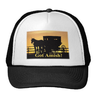 Got Amish? Cap