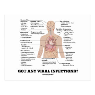 Got Any Viral Infections? Anatomical Health Postcard