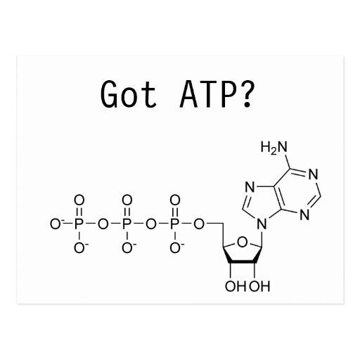 Got ATP? Post Cards